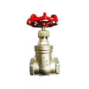 SS Gate Valve BSPT Featured