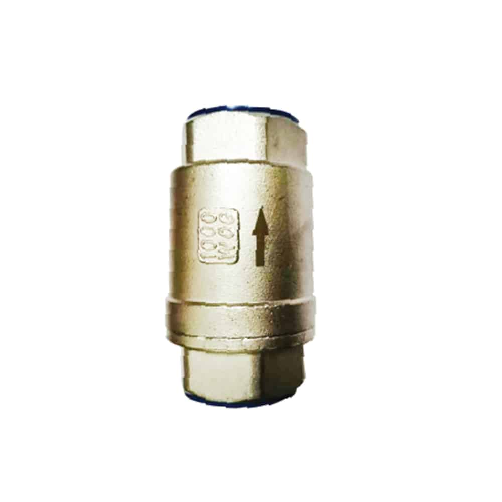 SS Vertical Check Valve Featured